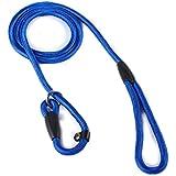 2013newestseller Pet Dog Whisperer Cesar Slip Training Leash Lead Collar (Blue)