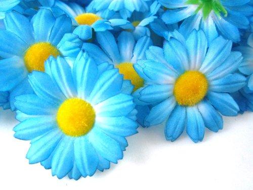 ((24) Silk Blue Gerbera Daisy Flower Heads , Gerber Daisies - 1.75