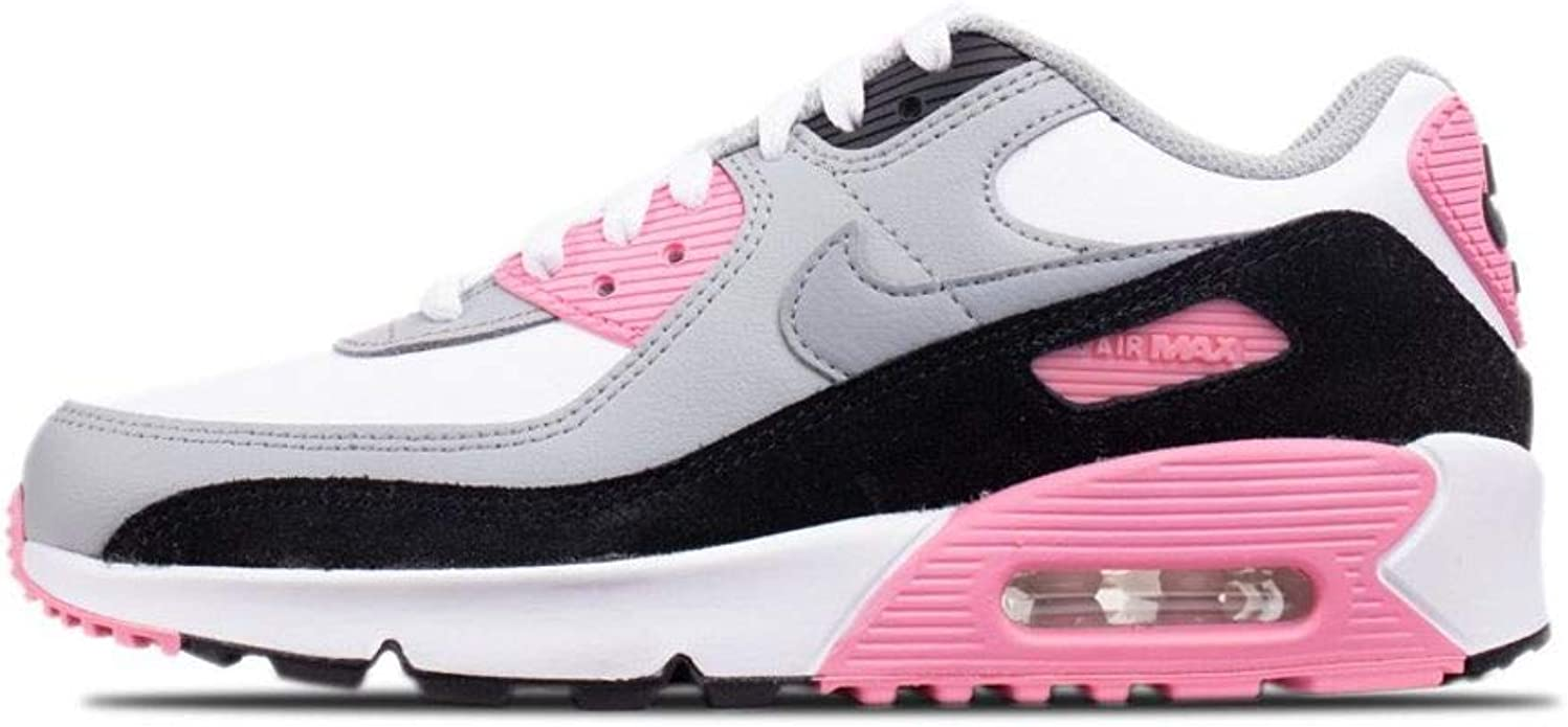 Ocupar traductor muelle  Amazon.com | Nike Air Max 90 LTR (gs) Big Kids Casual Running Shoes  Cd6864-104 | Running