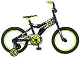Teenage Mutant Ninja Turtles Boy's Bicycle, 16-Inch, Black
