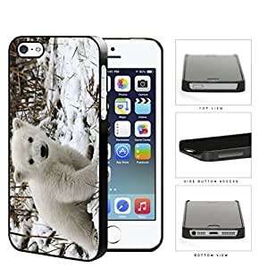 Cute Baby Polar Bear Animal in White Snow Hard Snap on Phone Case Cover iPhone i5 5s
