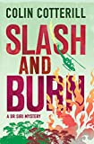 Front cover for the book Slash and Burn by Colin Cotterill