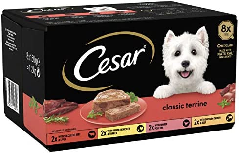 Cesar Classics Terrine – Wet Dog Food for Adult Dogs 1+ Mixed Selection in Jelly, 24 Trays (24 x 150 g) – Dogs Corner