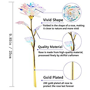 BEFINR 24K Colorful Rose Artificial Flower Unique Gifts Valentine's Day Thanksgiving Mother's Day Girl's Birthday, Best Gifts for Her for Girlfriend Wife Women 4