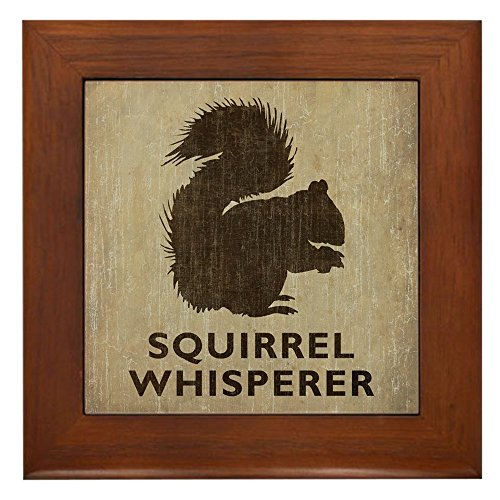 (CafePress Vintage Squirrel Whisperer Framed Tile, Decorative Tile Wall Hanging)