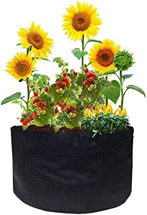 Fabric Pot with Handles Viagrow 3-Pack , 15 gallon