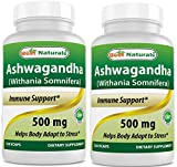 Best Naturals Ashwagandha Extract 500 Mg 120 Capsules (Pack of 2) For Sale