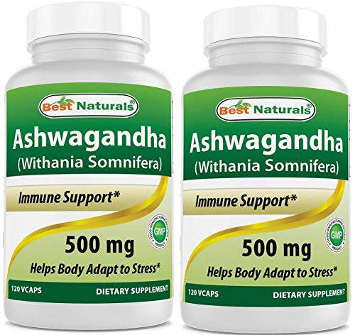 Best Naturals Ashwagandha Extract 500 Mg 120 Capsules (Pack of 2)