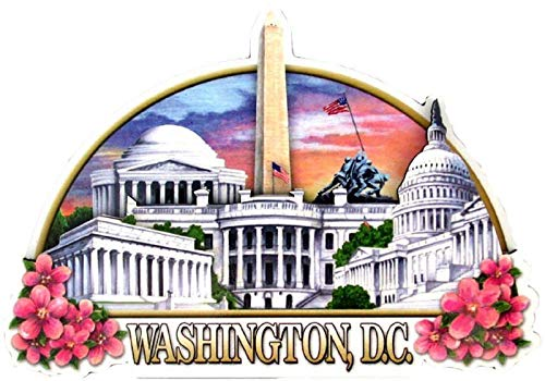 Washington DC Montage Artwood Fridge Magnet (Best Souvenirs From Dc)