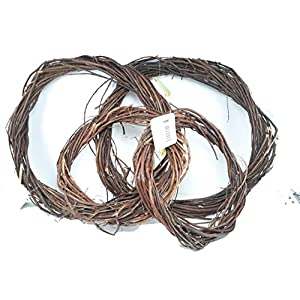 Floral Garden Pack of 4 Natural Brown Willow Wreaths 3