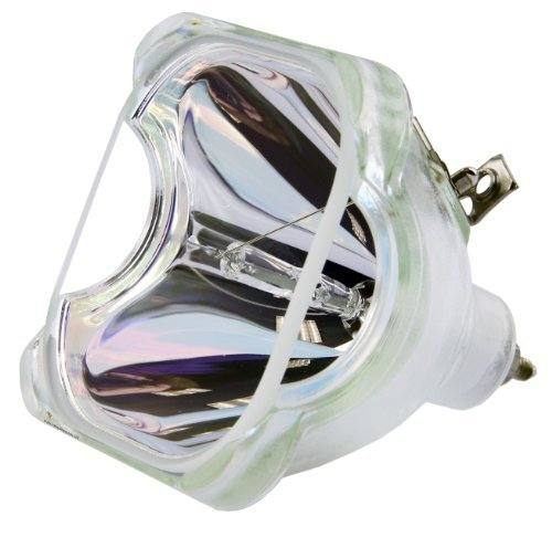 (Philips OEM PHI/388 Replacement DLP Bare Bulb (RP-P022-1))