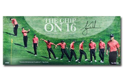 Tiger Woods Autographed