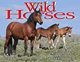 img - for Wild Horses 2015 Calendar book / textbook / text book