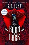 Burn the Dark Sneak Peek (English Edition)