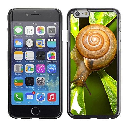 "Premio Sottile Slim Cassa Custodia Case Cover Shell // V00003839 escargot après la pluie // Apple iPhone 6 6S 6G 4.7"""