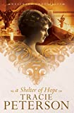 Free eBook - A Shelter of Hope