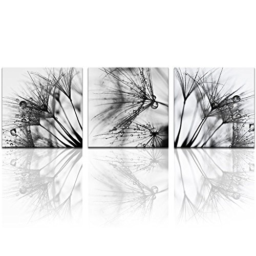 Black and White Dandelion Canvas Print set of 3,Close-up Dewdrop on Floral Multi Pieces Wall Art,Modern Home Wall Decor Art Ready to Hang - 60