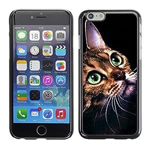 PC/Aluminum Funda Carcasa protectora para Apple Iphone 6 Plus 5.5 Ocicat Savannah Serengeti Bengal Cat / JUSTGO PHONE PROTECTOR