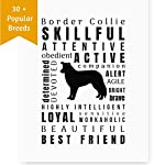 Dragonfly home & gift Dog Décor Border Collie Wall Art - Quote Print (8.5x11 Unframed) Pet Memorial Gifts | Dog Mom | New Puppy | Original Gifts for Dog Lovers 6