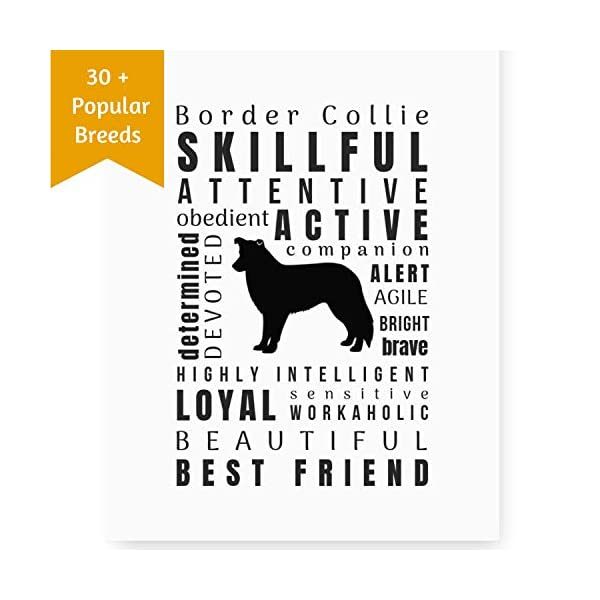 Dragonfly home & gift Dog Décor Border Collie Wall Art - Quote Print (8.5x11 Unframed) Pet Memorial Gifts | Dog Mom | New Puppy | Original Gifts for Dog Lovers 1