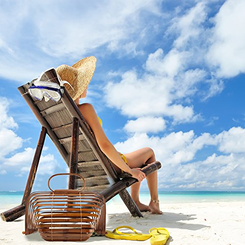 Marrone Tote Bosco Spiaggia Piccolo Borsa Creativa Birdcage Donna Pieghevole Bag A Cheerfulus Di Colore Mano Grande Bambù Corsa CBgTwnq