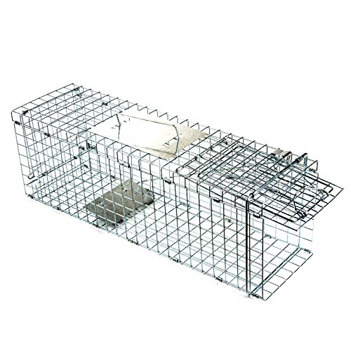 D4P Display4top Animal Trap Cage Trampa de Captura de Animales Vivos, Gatos, Perros, Conejos, roedores: Amazon.es: Deportes y aire libre