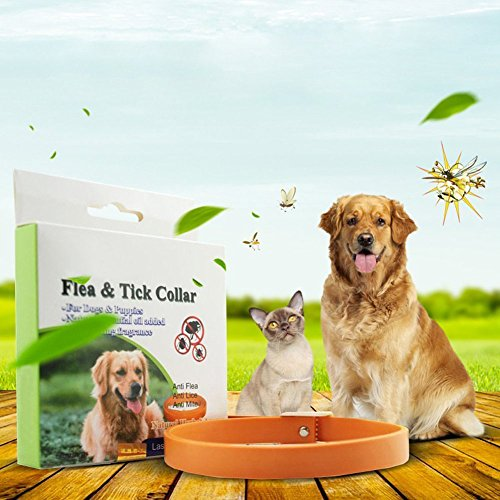Tutuba Pet Flea Ticks Dog Collar Solar Natural Essential Oil