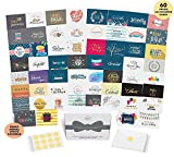 Dessie Greeting Cards Assortment - 60 Unique Assorted Cards for All Occasions w/Greetings Inside and Card Organizer. Birthday, Thank You, Sympathy, Baby, Wedding and More. Envelopes and Gold Seals
