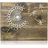 Amazon String Art Kit Diy Kit Crafts Kit Crafts For Adults