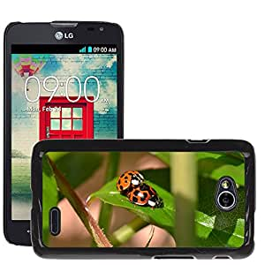 Hot Style Cell Phone PC Hard Case Cover // M00109544 Ladybird Mating Spots Red Black // LG Optimus L70 MS323