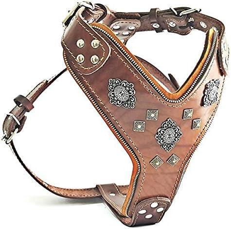 Platz 1 – Bestia |Aztec| Hundegeschirr Leder für große Hunde