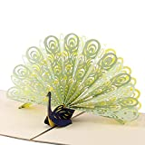 Paper Spiritz Peacock Pop up Cards Birthday, Laser Cut Graduation, Fathers Day Card, Mothers Day, 3D Thank You Cards all Occasion, Anniversary for kids, Handmade Gift Cards