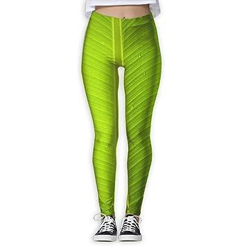 Jack16 Pantalones Tropicales para Yoga, Entrenamiento ...