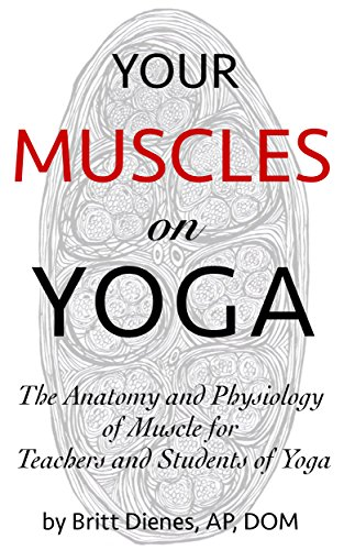 Your Muscles on Yoga: The Anatomy and Physiology of Muscle ...