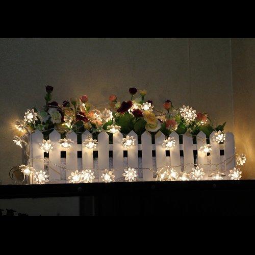 LED String Lights 4M/13feet 40 LED Lotus Flower for Chrismas, Party, Wedding, Indoor, Garden Décor (Warm white)