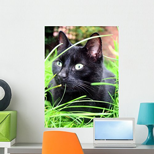 Wallmonkeys Black Cat Wall Decal Peel and Stick Graphic