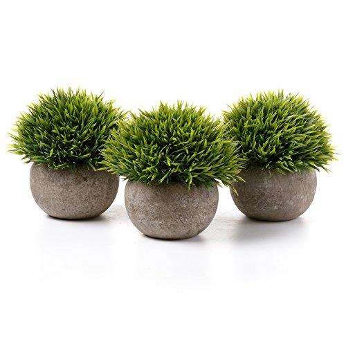 grass pots - 9