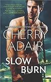 Slow Burn: An Anthology (Hqn)