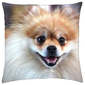 Diseño de perro–manta funda de almohada (16