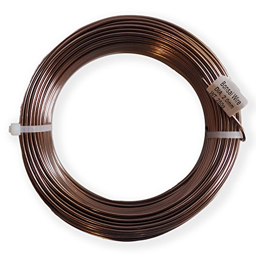 Grow A Bonsai Tree Anodized Aluminium 2.5mm Bonsai Training Wire 250g Large Roll 60 Feet - Choose Your Size and Color - 2.5mm, Black