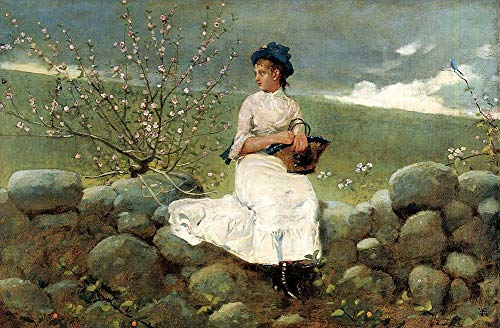 $50-$2000 Hand Painted Art Paintings by College Teachers - Peach Blossoms Realism Painter Winslow Homer Oil Painting for Wall Art Decor -Size 01