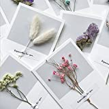 Greeting Cards Assortment Blank Mothers Gift Cards Graduation Wedding Wish Card Dry Flower 10pcs Thank You Cards for Gift Birthday Note