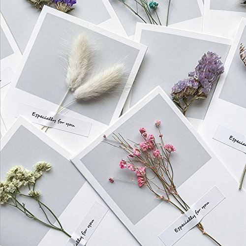 Greeting Cards Assortment Blank Mothers Gift Cards Graduation Wedding Wish Card Dry Flower 10pcs Thank You Cards for Gift Birthday Note ()