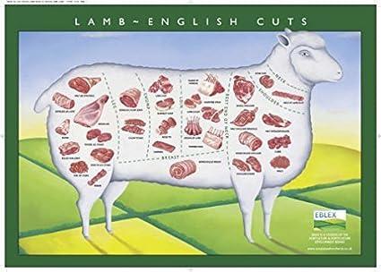 """Lamb Cuts Cuts Of Meat Chart Poster 27/""""x40/"""""""