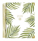 """bloom daily planners 2019 Calendar Year Hardcover Vision Planner (January 2019 - December 2019) - Monthly/Weekly Column View Inspirational Dated Agenda Organizer - 7.5"""" x 9"""" - Palm Leaves"""