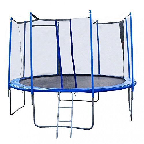 Net W/ Spring Pad Ladder,14 FT Round Trampoline with Enclosure by Mr Direct