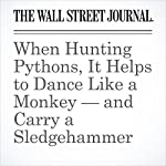When Hunting Pythons, It Helps to Dance Like a Monkey — and Carry a Sledgehammer | Arian Campo-Flores