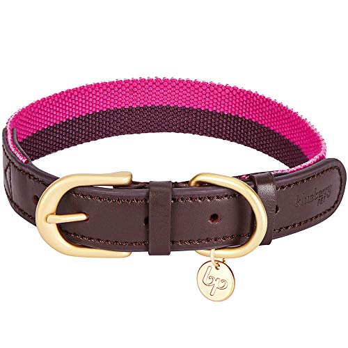 Blueberry Pet 8 Colors Polyester Fabric Webbing and Soft Genuine Leather Dog Collar in Hot Pink and Purple, Large, Neck 18