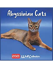 Abyssinian Cats 2021 Wall Calendar: Oficial Abyssinian Cat Breed Calendar, 18 Months