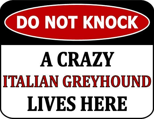 (Do Not Knock A Crazy Italian Greyhound Lives Here 8x12 inch Metal Aluminum Dog Sign)